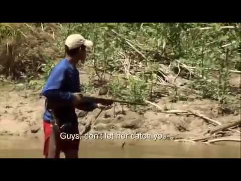 Documentaire choc au coeur d'une tribu amazonienne 2015 HDde YouTube · Durée:  50 minutes 59 secondes