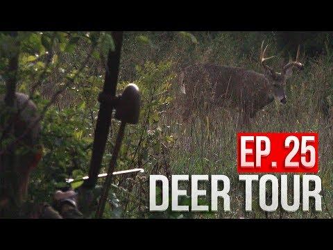 BIG BUCK at 15 YARDS, Public Land LONGBOW Hunt!  DEER TOUR E25