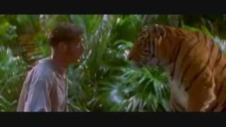 Shere Khan hunts Wilkins