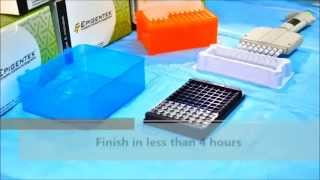 Global DNA Methylation 5mC Quantification ELISA for Epigenetic Research