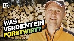 Borkenkäfer jagen und Bäume fällen: Das verdient ein Forstwirtschaftsmeister I Lohnt sich das? | BR
