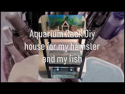 Aquarium Rack Diy  house for my hamster and my fish