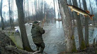 Ловля ЩУКИ на ПАУК (ПОДЪЁМНИК)