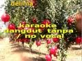 Download DELIMA DANGDUT KARAOKE TANPA  VOCAL MP3 song and Music Video