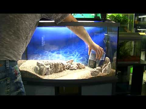 Как оформить угловой аквариум