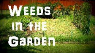 Weeds in the Garden FAIL