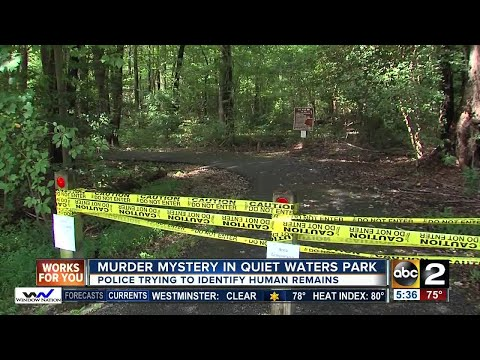 Police trying to identify human remains found in Annapolis