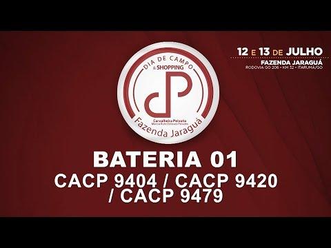 LOTES 40,41,42-BATERIA 01 (CACP 9404/CACP 9420/CACP 9479)