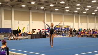Usag Level 4 Floor Routine 1st Place 9 550