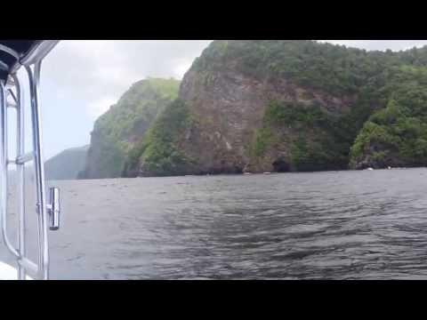 Dolphins Escorting Boat HD 23-06-2013 (Down the Islands Trinidad & Tobago)