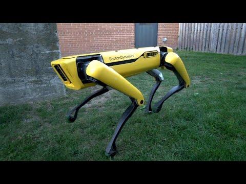روبوت واقعي يحاكي حركات الكلب ويفتح الباب لوحده  - نشر قبل 1 ساعة