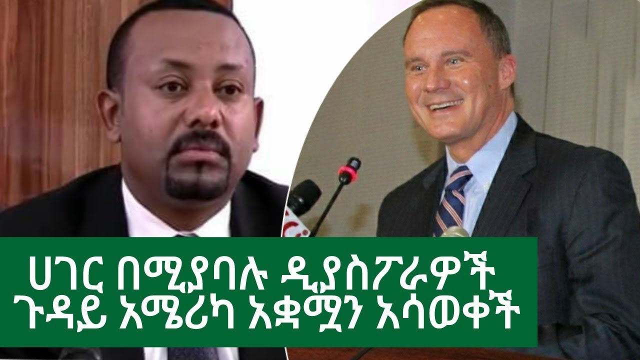 Ethiopia | ሰበር ዜና -  ሀገር በሚያባሉ ዲያስፖራዎች ጉዳይ አሜሪካ አቋሟን አሳወቀች | VOA