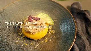 Gastronomy - EN