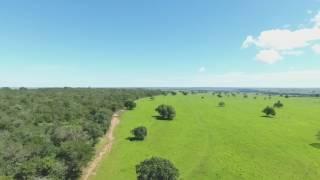 Fazenda Jatiúca - Água Clara/MS - Abril/2017