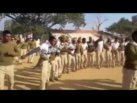 Indian army dance celebration on cg song | online colleges | dance | belly dance | music