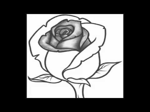 كيفية رسم وردة بطريقة سهلة و رائعة Youtube