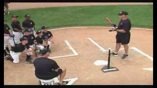 ripken baseball weight shift
