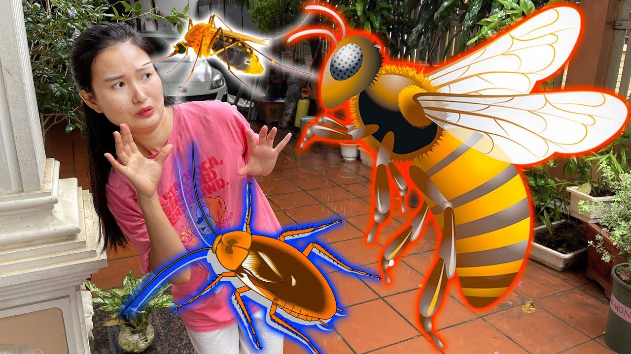 Các con vật bay vào nhà Changcady sau cơn mưa, con gián, con muỗi, con ong - Part 306