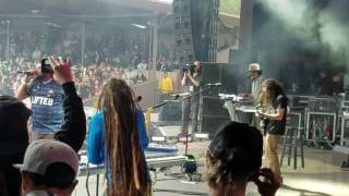 "Tribal Seeds ""Vampire "" Cali Roots 2016"