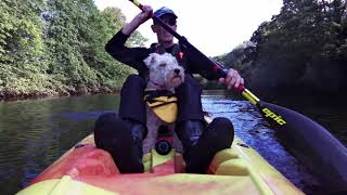 Kayaking with a dog.