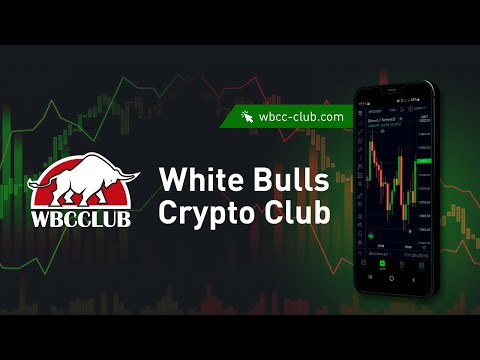 Знакомство с White Bulls Crypto Club (WBCC)