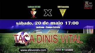 Final da Taça Dinis Vital 2016/2017