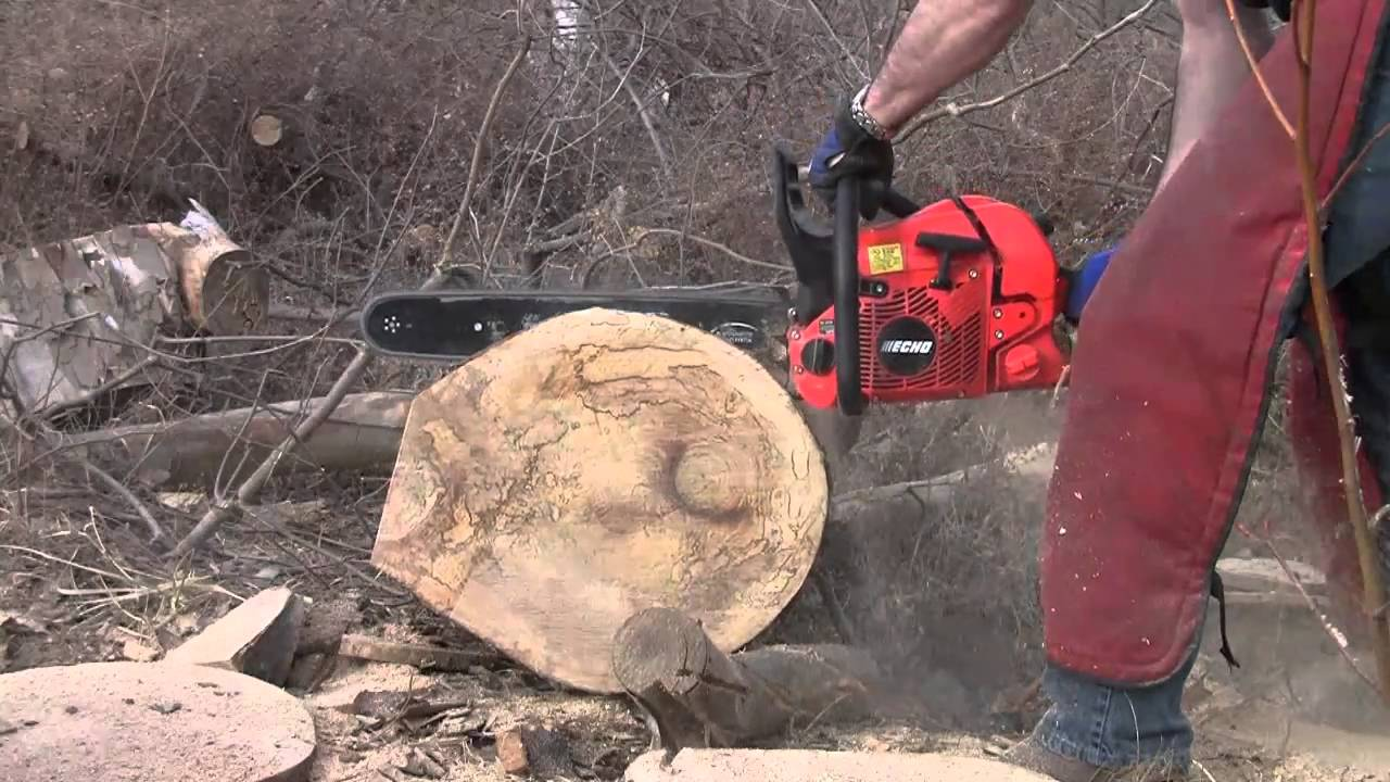 Echo CS-590 Timberwolf in Chainsaws