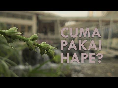 Video Cinematic Sony Xperia 1 (Cinema Pro)