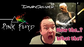 David Gilmour - Comfortably Numb (Reaction Video)