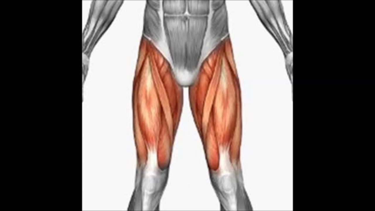 Desgarro muscular cuadriceps sintomas