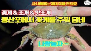 몽산포해수욕장에서의  해루질 꽃게 & 맛조개 & 동죽 …