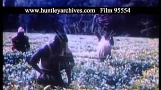 Workers In Tea And Coffee Plantations In Kenya, 1950s - Film 95554