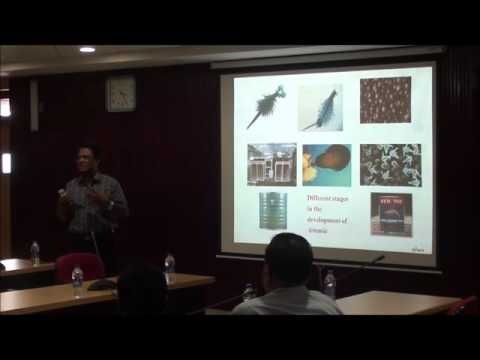 Status of Artemia Culture in India and Future Prospects