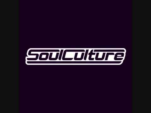 Soulculture Exclusive mix The Everyday Junglist Podcast Detroit-Episode 241
