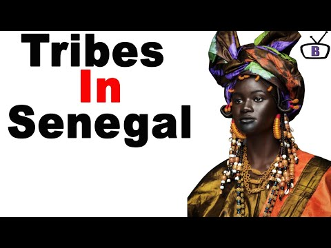 Major ethnic groups in Senegal and their peculiarities