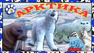 Снежные хищники и ко макси АРКТИКА (EPIC ANIMALS) как ДЕАГОСТИНИ 🐧🐋❄️