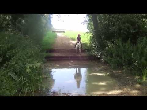 Rules Do Not Apply| Aylesford XC