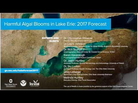 Harmful Algal Bloom Forecast 2017