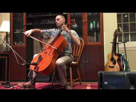 All 4 Parts of Pachelbel Canon Played LIVE on One Cello - Synergismus