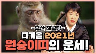 2021년 신축년 신년운세 원숭이띠 편!! 30대 40대 50대 60대 70대들은 꼭 필히 시청해야하는영상!…