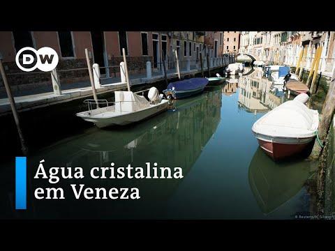 Coronavírus deixa canais de Veneza mais limpos