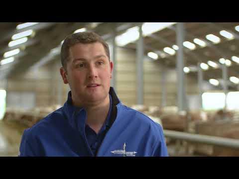 Kevin Lawrie- Dairy Farmer