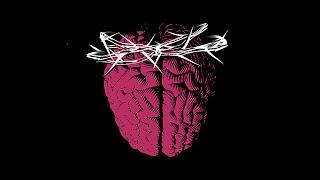 ПРОБЛЕМА ВОСКРЕШЁННОГО МОЗГА | рубрика ВЖУХ | книга The Idea of the Brain