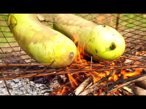 FOREST CHICKEN COOKING INSIDE BOTTLE GAURD – RECIPES FOR CHICKEN – WILD FOREST INDIAN RECIPE