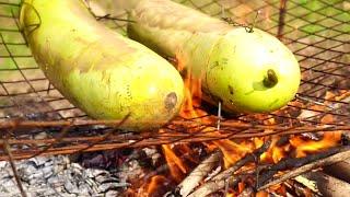 FOREST CHICKEN COOKING INSIDE BOTTLE GAURD - RECIPES FOR CHICKEN - WILD FOREST INDIAN RECIPE