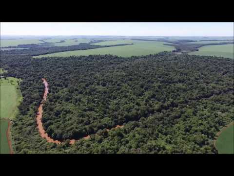 Bird eye view of the Atlantic Forest landscape in Paraguay