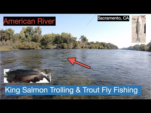 American River Salmon & Trout Fishing