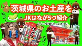 【茨城県】茨城県お土産をJKはなが5つ紹介【納豆の妖精ごっこ】