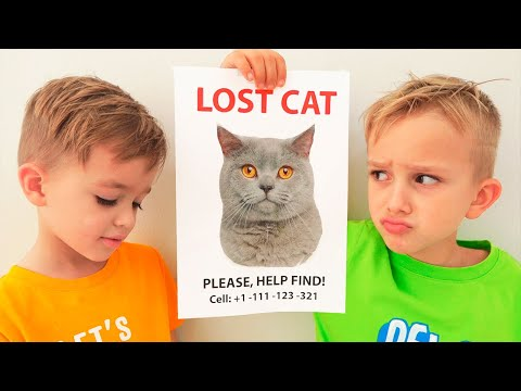 Vlad and Nikita Lost our cat