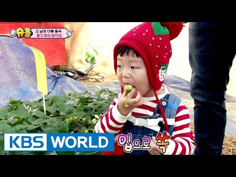 Seolsudae came to pick berries [The Return of Superman / 2017.03.19]